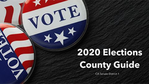2020 Elections County Guide